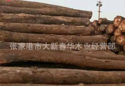 張家港市大新春華木業經營部