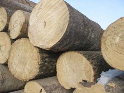 北京市华夏人合木材公司