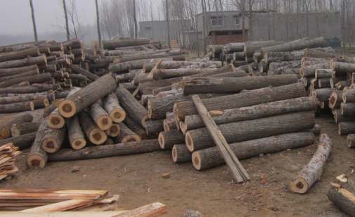 临颍县保发木业有限公司