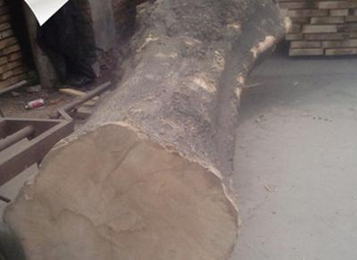 河南省金龙木业有限公司